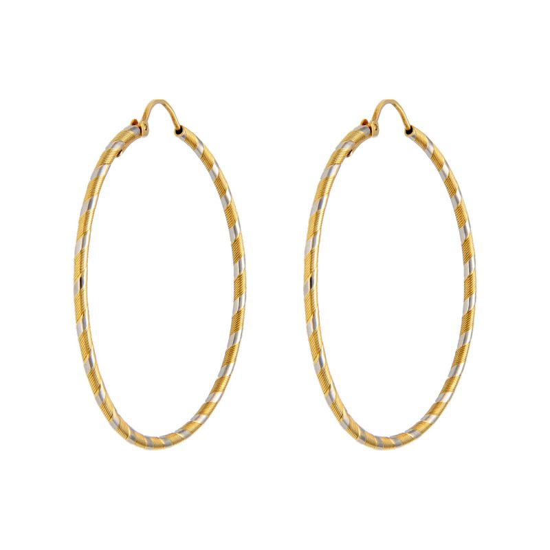 Circle earrings white gold and yellow